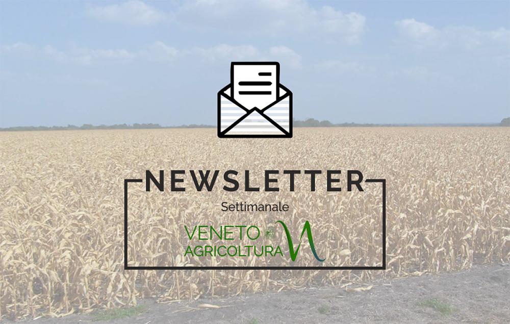 Ricco di notizie l'ultimo numero della newsletter Agricoltura Veneta