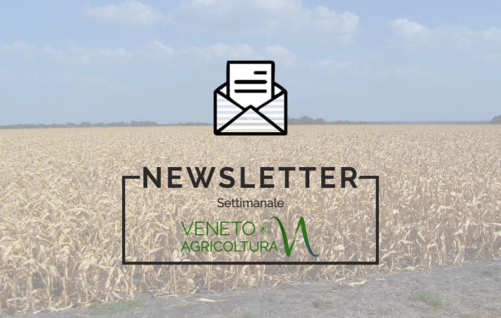 E' online l'ultimo numero della newsletter Agricoltura Veneta
